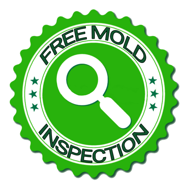 Free Mold Inspection