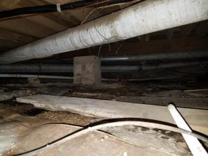 Dirt Crawl Space with water and mold growth
